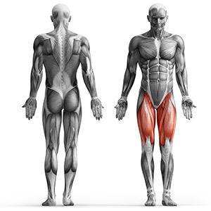 Maszyna na mięśnie czworogłowe ud - Marbo Sport