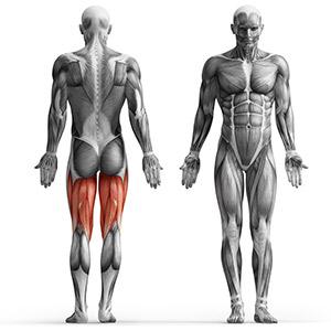 Maszyna na mięśnie dwugłowe uda na wolny ciężar - Marbo Sport